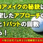ゴルフスコア 平均パット数から分かるスコアメイクの秘訣!重要性を占めるパター数
